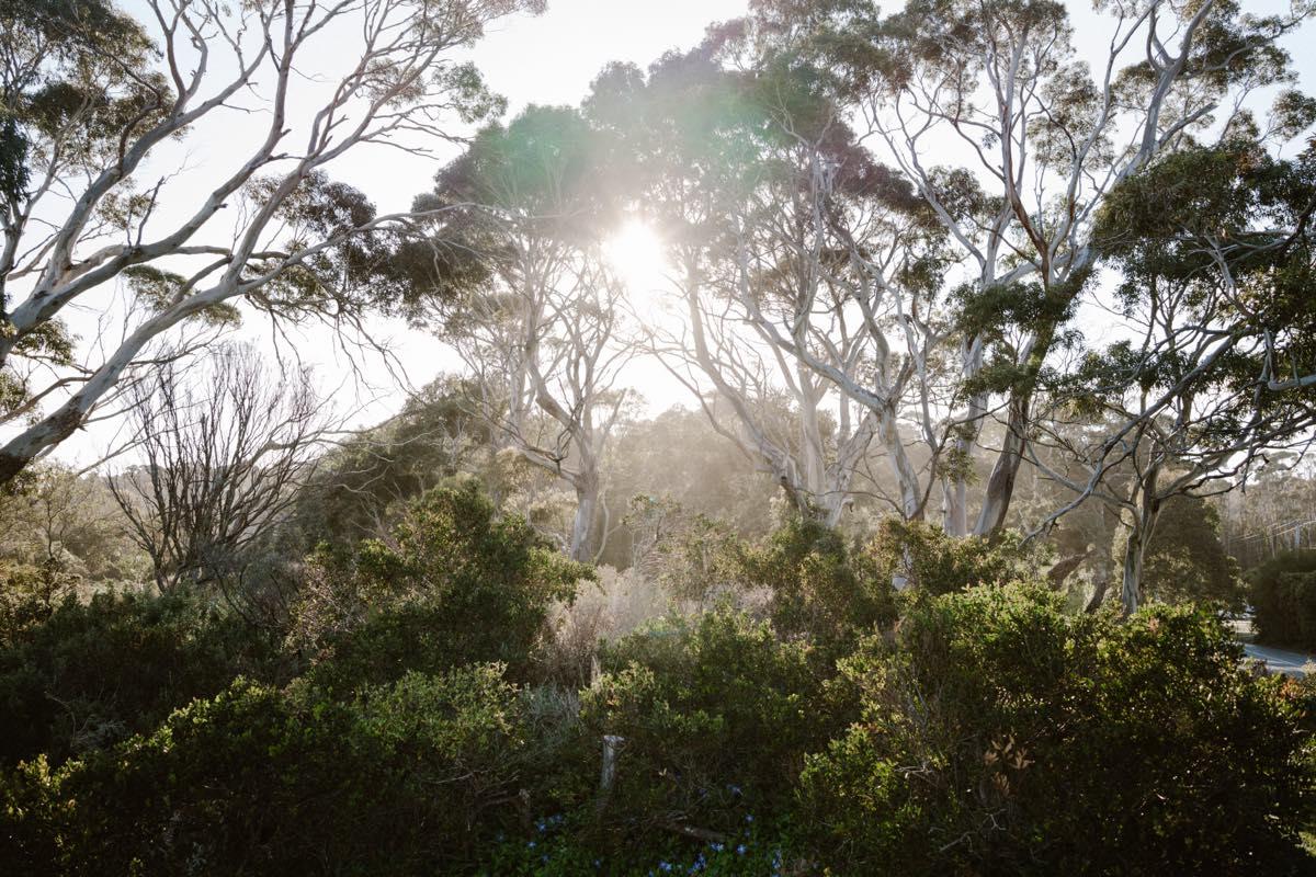 TasmaniaTravel0037